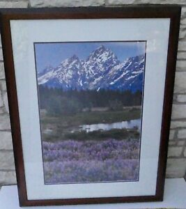 FREDERIC C JOY 251/400 LIMITED SIGNED PRINT LUPINE CATHEDRALS