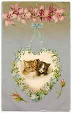 Helena Maguire. Cats Cats Katze