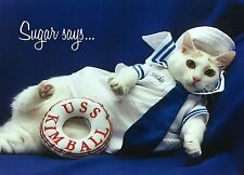 Sugar Says Fat Cat Model Inspirational Encouragement Greeting Card Sailor