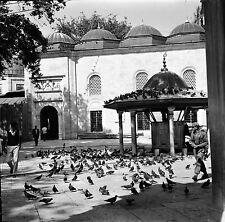 TURQUIE c. 1960 - Pigeons La Mosquée  Eyüp - Négatif 6 x 6 - Tur 40