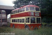 Belfast Trolleybus 245 at East Anglia Transport Museum Irish Bus Photo