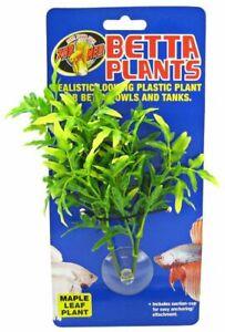 LM Zoo Med Aquatic Betta Plants - Maple Leaf Plant