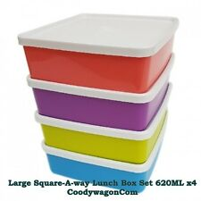 Tupperware Large Square Away 620ML 4 pcs Lunch Box Set in multicolour