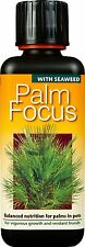 PALM FOCUS - 300ml - Balanced Nutrient Feed for Palms