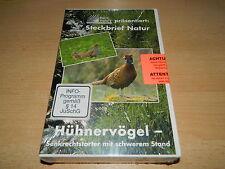 Paul Parey präsentiert: Steckbrief natur - Hühnervögel - VHS -  NEU