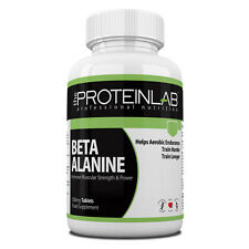 Beta Alanine Pre Workout Energy Endurance Lean Muscle Mass Long Lasting
