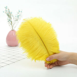 Wholesale, 10-1000pcs 8-10 inches/20-25 cm high quality natural ostrich feathers