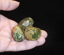 Carols: RAINFOREST RHYOLITE (3) Tumbled Stone Crystal Healing Australia  #59N