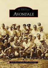 Avondale (Images of America: Arizona), The City of Avondale, Squire, Jerry, New
