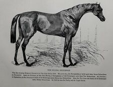 1831 ANTIQUE FARRIER HORSE PRINT ~ THE FLYING DUTCHMAN