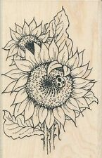 Sunflower Laybug P024  STAMPENDOUS RUBBER STAMP  w/m  Free Shipping NEW