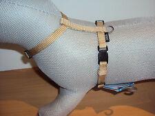 Hundegeschirr/Nylongeschirr/H-Geschirr in beige Gr.XS-S 30-40 cm 10mm von Trixie