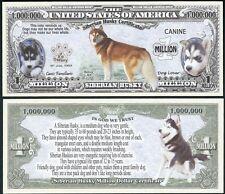 Lot of 25 BILLS - Siberian Husky Dog Bill Puppy & Adult Pics, Facts on Back