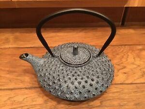 NEW BergHOFF Cast Iron 0.85-Quart Teapot