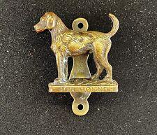 Foxhound Dog Brass Door Knocker
