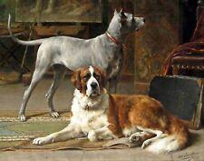 Great Dane & St Bernard by Dutch  Otto Eerelman. Animals . 11x14 Print