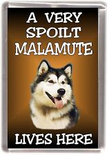 "Alaskan Malamute Dog Fridge Magnet ""A VERY SPOILT ..... LIVES HERE"" by Starprint"