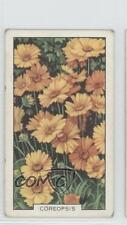 1938 Gallaher Garden Flowers Tobacco Base #40 Coreopsis Non-Sports Card 1i3