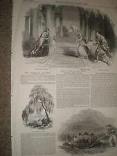 Racine play Phedre Funeral Cypress Giant Gallipagos tortoise 1850 prints ref AX