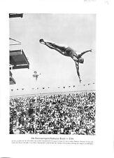 Georgia Coleman athlète Jeux olympiques d'été de Los-Angeles USA 1932