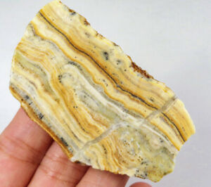 215Ct Natural Bumblebee Jasper Crystal Rough Specimen Indonesia YYB28