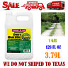Compare-N-Save Concentrate Grass and Weed Killer, 41-Percent Glyphosate 1-Gallon