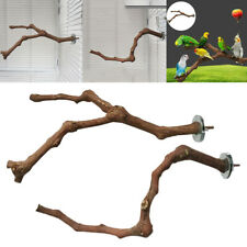 New listing Natural Parrot Bird Stand Tree Branch Pet Budgie Toys Perches Grinding