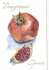 RARE Pomegranate fruit by Valeeva Russian modern postcard