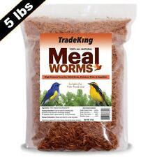 TradeKing 5 lb Dried Mealworms - Sold Direct From Manufacturer - TradeKing®