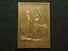 PLAQUE BRONZE O.ROTY - HYGIE - SCIENCE FACULTE de MEDECINE à PAUL BROUARDEL 70mm