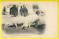 cpa Ed. CLAMECY (Nièvre) Marché Foire aux COCHONS PORCS Fermiers Market Pigs