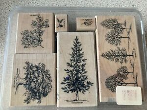 Stampin' Up! LOVELY AS A TREE Wooden rubber stamps set