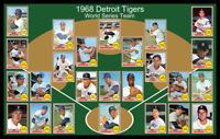 1968 DETROIT TIGERS Baseball Card Complete Set POSTER Unique Wall Art Decor 68
