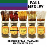 Wild Berry Incense - FALL MEDLEY - 20 STICKS EACH FRAGRANCE 100 TOTAL MED0916