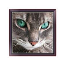 Animal Cat DIY 5D Diamond Embroidery Painting Cross Stitch Art Craft Home Decor