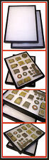 1 Display Case Police Fire Service British US Buckle Badge Insignia Helmet Plate