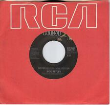 RICK ASTLEY  Never Gonna Give You Up / instrumental version 45  RickRoll song