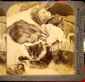 Wonderful Stereo Card Sleeping Girl, her Cat & Doll Great Condition by Works Sun
