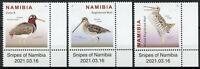 Namibia Birds on Stamps 2021 MNH Snipes Great African Snipe 3v Set + Selvedge A