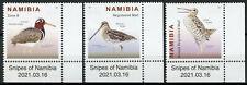 More details for namibia birds on stamps 2021 mnh snipes great african snipe 3v set + selvedge a