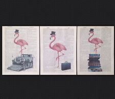 3 X Vintage Pink Flamingo Prints Original 1933 Dictionary Page Wall Art Pictures