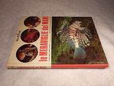 Le Meraviglie dei Mari, Walt Disney, Frank de Graaf, 1974, 173 num. Seiten