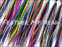 Discounted Feather Hair Extensions / 50 Piece Variety Pack / All Bright Colors