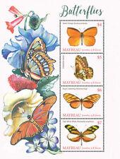 Mayreau , Grenadines of St. Vincent 2019 fauna butterflies I201901