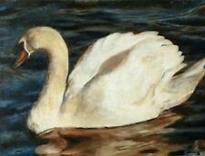 Original oil painting on canvas a swan beautiful art wildlife art paintings