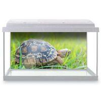 Fish Tank Background 90x45cm - Cute Tiny Tortoise Pet Animals Turtle  #8290