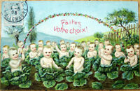 1906 Multiple Baby Postcard: Cabbage Patch of Babies - Embossed, Color Litho