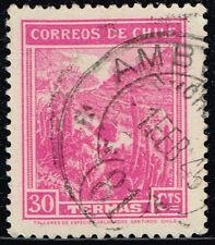 CHILE STAMP RPO RAILWAY CANCELLATION AMBULANCIA # 81