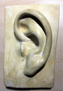 """Vintage Chalk ware Plaster Ear Hand made Mold EAR-One of a kind 7"""" OOAK Odd"""
