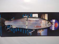 Morone Sacramento River Splittail Striper swimbait fishing Glide Bait bass